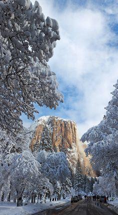 Winter View of El Capitan seen from Valley loop. Yosemite National Park.