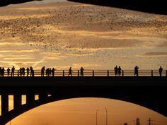 Austin bats at Congress Bridge