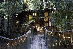 Nest inside the Redwood Treehouse, hidden in a forest just outside of Corralitos in the Santa Cruz Mountains. https://www.airbnb.com/rooms/153903