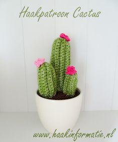 Een gratis Nederlands haakpatroon van een cactus plant. Het haakpatroon van de cactusplant vind je op Haakinformatie. Ga jij de cactusplant ook haken?