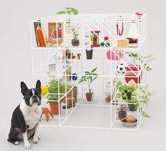 Architecture for Dogs 02 Designed by Sou Fujimoto 藤本壯介(Photography by Hiroshi Yoda) Sou Fujimoto, Toyo Ito, Cat House Diy, Dog Milk, Diy Dog Toys, Cool Dog Houses, Eco Architecture, Cat Design, Diy Stuffed Animals