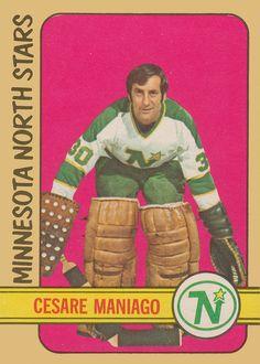 Minnesota North Stars, Minnesota Wild, Hockey Cards, Baseball Cards, Goalie Mask, Hockey Goalie, National Hockey League, Nhl, Growing Up