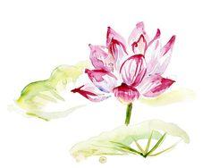 Origineel Lotus Lelie schilderij. Aquarel Lotus door Zendrawing, €45.00