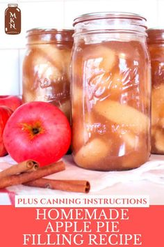Learn how to make homemade apple pie filling using a water bath or steam canner. Have canned apple pie filling sitting on the pantry shelf means you have a pie in just a few minutes! It also makes for a great Christmas gift or hostess gift! Canning Apple Pie Filling, Homemade Apple Pie Filling, How To Make Homemade, Canning Apples, Do It Yourself Inspiration, Pantry, Food And Drink, Shelf, Bath