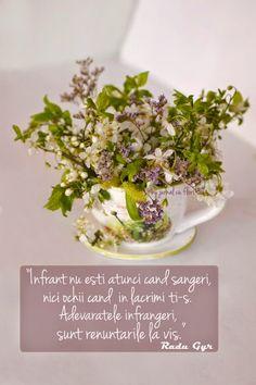 citat Radu Gyr poezie despre vis infrangeri, ceasca cu flori de primavara