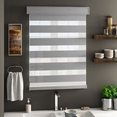 Latitude Run Brysun Room Darkening Roller Shade & Reviews | Wayfair
