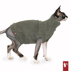 Warm and soft sweater for cat
