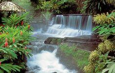 Beautiful Tabacon hot springs - Costa Rica