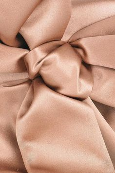 Valentino dusky-pink bow-embellished satin clutch This Valentino clutch has a silver zip fastening across top, a designer-stamped plaque at interior and Dusty Rose, Dusty Pink, Pale Pink, Pink Silk, Pink Satin, Winter Color, Fee Du Logis, Sandstone Color, Shabby