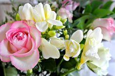 #flowers www.stellarstories.fi @stellarstoriesblog #stellarstoriesblog