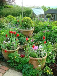 Come with me on a tour of Annie's glorious garden....... outside the front door is a paved area with a bench and lots of p...