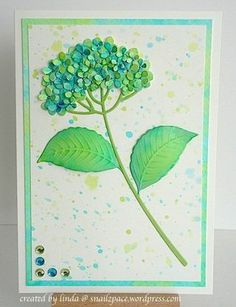 CAS. Hydrangea in nontraditional colors. ------Linda/Impression Obsession