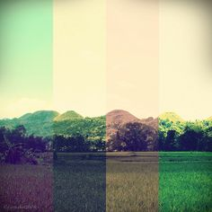landscape color theory