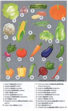 Vegetables in Ukrainian / Polish / Russian Ukrainian Language, Russian Language, Learn Polish, Polish Words, Polish Language, Synonyms And Antonyms, Foreign Languages, Idioms, Poland