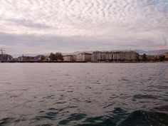 Geneva from a mouette, 2013