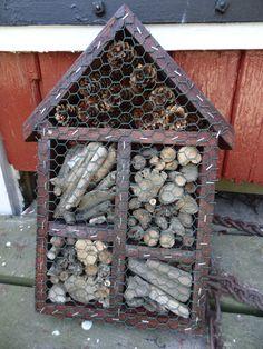 A very popular bug-hotel in my garden :-)
