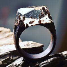 Miniature worlds atop wooden rings   http://ift.tt/24ikww1 via /r/woahdude http://ift.tt/26shtDx