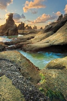 Point of Arches area at  Shi Shi Beach | Olympic National Park, Washington