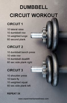 dumbbell workout routine Research shows that working out with free weights is a more effective workout. This dumbbell workout routine works all your major muscles. Dumbbell Workout Routine, Full Body Dumbbell Workout, Wod Workout, Tabata Workouts, Workout Routines, Workout Fitness, Home Circuit Workout, Boxing Workout, Pyramid Workout