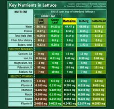 ♥Reasons You Should Be Eating Romaine Lettuce Above All Others♥  In terms of nutrient density, none are healthier than Romaine. Eat in good health!