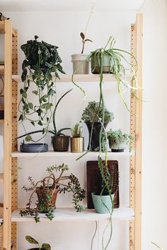 UOSpring | UOBlog: UO Home @ Still_______ | Mod Metal Small Plant Pot | Home & Gifts | Home Furnishings | Terrariums & Gardens | Urban Outfitters #UOBlog #Blog #UrbanOutfitters #UOEurope