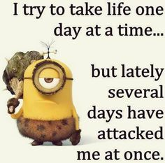 Funniest Minions Quotes (01:54:05 PM, Friday 11, November 2016 PST) – 65 pics http://ibeebz.com