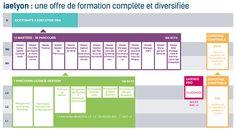 L'offre de formation en management - IAE Lyon