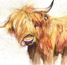 Miniature Breeds Of Cattle That Are Perfect For Small Farms Highland Cow Painting, Highland Cow Art, Highland Cattle, Highland Cow Tattoo, Animal Paintings, Animal Drawings, Art Drawings, Flower Drawings, Watercolor Animals