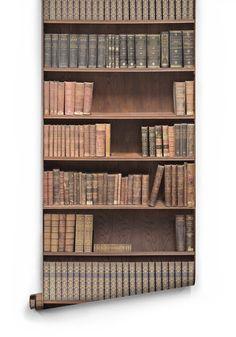 Bookshelf Boutique Faux Wallpaper design by Milton & King