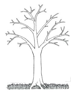 Free printable pictures of trees family tree template excel printable forms chart large christmas free camel pictures, Free Printable Pictures Of Trees, astounding Kids Coloring 2018 Inspiring ideas