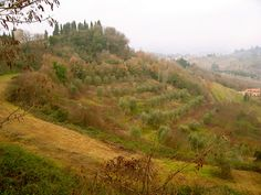 Chiusi, Italy by Laura Gurton, via Flickr