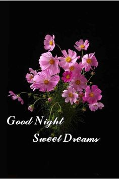 Good Night Greetings, Good Night Messages, Good Night Wishes, Good Night Quotes, Cute Good Night, Good Night Sweet Dreams, Good Night Blessings, Online Friends, Good Morning Flowers