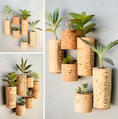bouchons de liège comme mini pot pour plantes avec aimants à accrocher au frigo