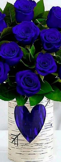Beautiful Blue Roses Note: Love the vase too! Flowers Nature, Exotic Flowers, My Flower, Pretty Flowers, Rose Wallpaper, Garden Planning, Beautiful Roses, Belle Photo, Floral Arrangements