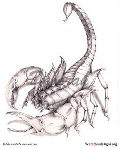 Scorpion tattoo12