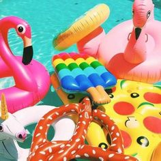 Image via We Heart It #birds #color #colorful #flamingos #food #fun #funny #party #photography #pink #pizza #pool #pretzels #rainbow #style #summer #sun #swimming #swimmingpool #swimwear #unicorn #vacation #valeria #water #pizzalove #summerstyle #cute #love #poolfloats #pizzapool #popsicles #unicornpoolfloat #flamingopoolfloat