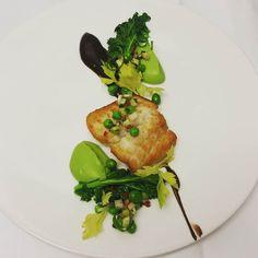 Halibut English Peas Black Garlic Meyer Lemon Kohlrabi Spring Garlic Kale @regacayan #HotStoveClub - #theartofplating #artofplating #gastropost #gastronogram #gastroart #truecooks #chewdoin #plateswagger #torontoeats #torontochefs #picoftheday #potd #foodstarz #gourmetartistry #phoodo #crazyintaste #foodporn #foodies #chefsfeed #chefstable #chefstalk #chefstagram #tastethesix #torontotaste #tastetoronto #soigne #thestaffcanteen #cookniche #narcitytoronto @mikuniwildharvest @minus8vinegar by…