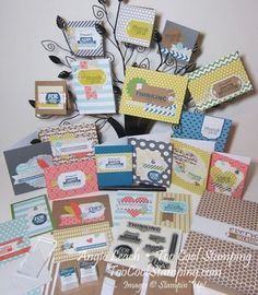 Everyday Occasions Cardmaking Kit - Look at all the stuff that comes with it!  Awesome value!  See all the cards and get the detailed scoop!  #cardmaking #cards #stampinup #kit #toocoolstamping www.TooCoolStamping.com