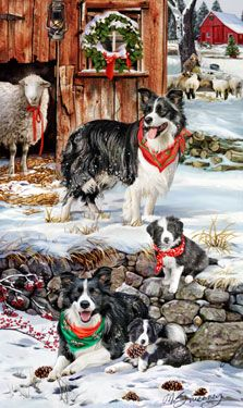 """New for 2013! Border Collie Christmas Holiday Cards are 8 1/2"""" x 5 1/2"""" and come in packages of 12 cards. One design per package. All designs include envelopes, your personal message, and choice of greeting. Select the inside greeting of your choice from the menu below.Add your custom personal message to the Comments box during checkout."""