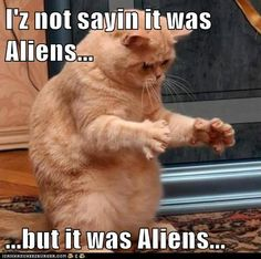 I'm not saying it was aliens.....but it was aliens