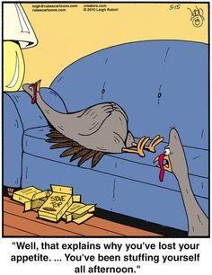Rubes by Leigh Rubin for May 2010 - Stacey H Burrage Turkey Jokes, Turkey Cartoon, Farm Cartoon, Thanksgiving Jokes, Thanksgiving Graphics, Thanksgiving Blessings, Funny Cute, Hilarious, Happy Turkey Day