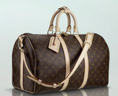 LV - Keepall 45 with Shoulder Strap...just like mine.  I got the shoulder strap before they were back. I think that qualifies me to start a blog now!