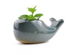 Cute whale shaped planter in stoneware. Glazed in blue. Ideal for planting succulents or cacti. Handmade in São Paulo, Brazil. Approximate dimensions: Length: 5 1/4 (13 cm) Height: 2 3/4 (6 cm) Width: 2 1/2 (6.5 cm) *** PLEASE NOTE: 1) This listing is for one item only. 2) Photos can