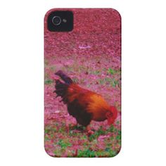 Rooster in the Purple Grass iPhone 4 Covers