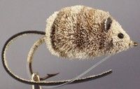 Want to make something like this...Bass & Pike Fly - Deer Hair Mouse