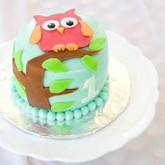 adorable owl cake....smash cake idea 4 sure! by brendaq