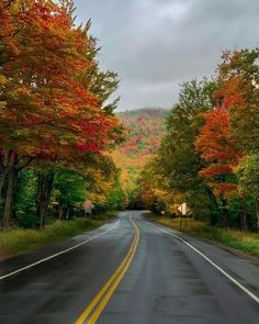 """Kristy & New England 🇺🇸 on Instagram: """"Here's my New Hampshire fall foliage update for this week 🍁🍁🍁…This photo was taken yesterday. Have been having a wonderful visit with my…"""" New England Fall, White Mountains, Happy Weekend, New Hampshire, Things To Do, Country Roads, Beautiful, Instagram, Cleaning Service"""