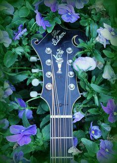 Gibson Mandocello Headstock in Purple Flowers. #Mandolin #Mandola #Mandocello