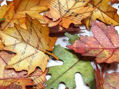 Botanicabella-Fall-Birdhouse-Annette-Green-10-of-19.jpg (900×675)
