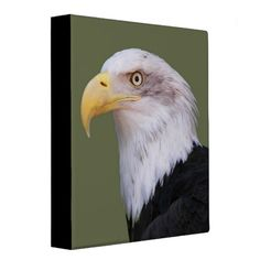 American Bald Eagle Photo 3 Ring Binder Custom Office Retirement #office #retirement